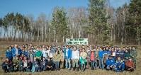 посадка леса в Одоевском лесничестве, Фото: 1