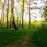 Три места для яркого загородного отдыха в Тульской области, Фото: 19