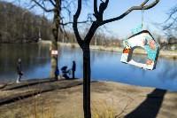 Солнечный день в Белоусовском парке, Фото: 50