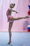 Соревнования по художественной гимнастике 31 марта-1 апреля 2016 года, Фото: 145