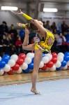 Соревнования по художественной гимнастике 31 марта-1 апреля 2016 года, Фото: 73