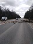 Сильный ветер в Туле повалил деревья, Фото: 10