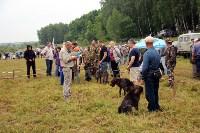 Выставка охотничьих собак под Тулой, Фото: 29