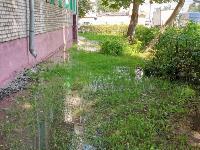 В Пролетарском районе Тулы затопило улицы и дворы: вода хлещет из колодцев, Фото: 20
