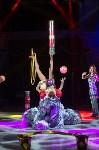 Тульский цирк, Фото: 84
