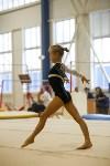 Спортивная гимнастика в Туле 3.12, Фото: 76