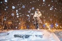 Сказочная зима в Туле, Фото: 25