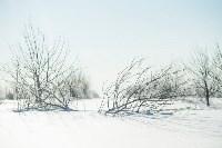 Снежное Поленово, Фото: 1