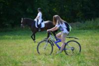 В Ясной поляне стартовал турнир по конному спорту, Фото: 103