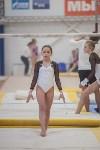 Первенство ЦФО по спортивной гимнастике, Фото: 116