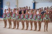 Первенство ЦФО по спортивной гимнастике, Фото: 8