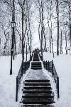 Темная сторона Платоновского парка, Фото: 11