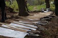 Высадка молодого леса, Фото: 2