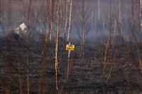 Дым от горящей травы, Фото: 11