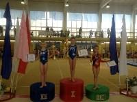 Туляки на соревнованиях по спортивной гимнастике в Брянске., Фото: 20