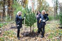 В Центральном парке Тулы появился сосновый бор «Слободы», Фото: 29