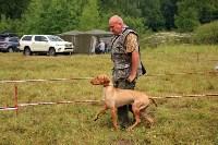 Выставка охотничьих собак под Тулой, Фото: 50