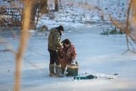 Морозное утро в Платоновском парке, Фото: 38