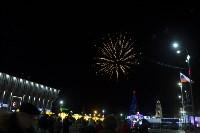 В Туле завершились новогодние гуляния, Фото: 37
