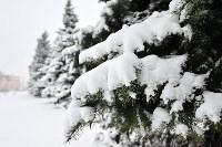 Снежная Тула. 15 ноября 2015, Фото: 37