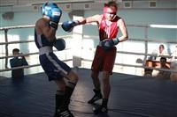 Первенство Тульской области по боксу, Фото: 18