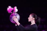 Aqua Show в Тульском цирке, Фото: 18