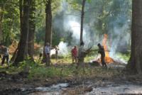 В Туле проводят работы по благоустройству зон отдыха. 26 июля 2014 год, Фото: 7