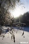 Зимняя сказка Платновского парка, Фото: 16