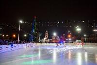 Туляки отметили Старый Новый год ледовым шоу, Фото: 30