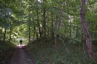 В лесу под Тулой поисковики нашли тайник с гранатами, Фото: 1