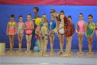 IX Всероссийский турнир по художественной гимнастике «Старая Тула», Фото: 20