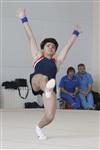 Первый этап Всероссийских соревнований по спортивной гимнастике среди юношей - «Надежды России»., Фото: 1