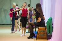 Соревнования по художественной гимнастике 31 марта-1 апреля 2016 года, Фото: 77