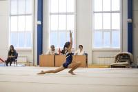 Спортивная гимнастика в Туле 3.12, Фото: 151