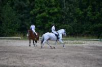 В Ясной поляне стартовал турнир по конному спорту, Фото: 135