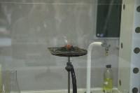 Открытие химического класса в щекинском лицее, Фото: 53