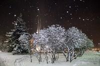 Новогодняя столица России, Фото: 18
