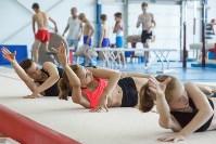 Тренировка гимнасток, Фото: 7