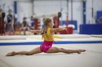 Спортивная гимнастика в Туле 3.12, Фото: 101