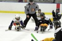 Алексинские следж-хоккеисты в Америке, Фото: 10