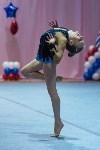 Соревнования по художественной гимнастике 31 марта-1 апреля 2016 года, Фото: 100