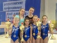 Туляки на соревнованиях по спортивной гимнастике в Брянске., Фото: 11