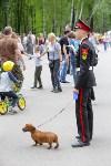 День Победы в Центральном парке, Фото: 15
