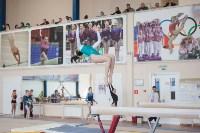 Первенство ЦФО по спортивной гимнастике среди юниорок, Фото: 15