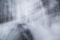 Темная сторона Платоновского парка, Фото: 15