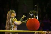 """""""Тайна пирата"""" в Тульском цирке, Фото: 20"""