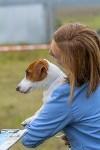 Международная выставка собак, Барсучок. 5.09.2015, Фото: 57