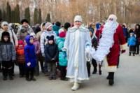 Битва Дедов Морозов. 30.11.14, Фото: 20