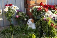 Тулячка погибла, спасая запертых в горящем доме собак: подробности истории , Фото: 4