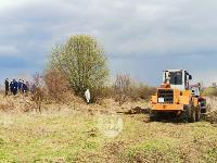 Чернский район, умерли 150 коров, Фото: 7